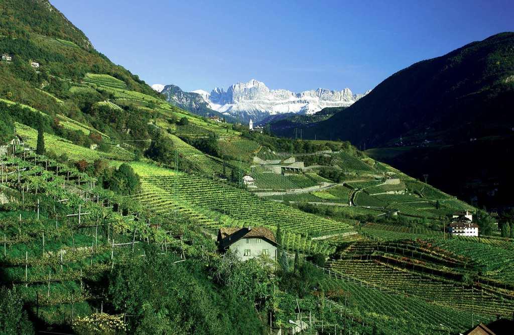 Trentino alto adige tom 39 s wine line for Mobilificio trentino alto adige