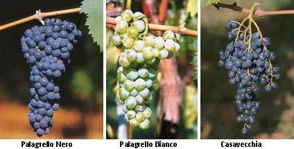 3 grapes
