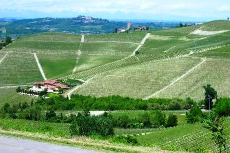 cascina estate